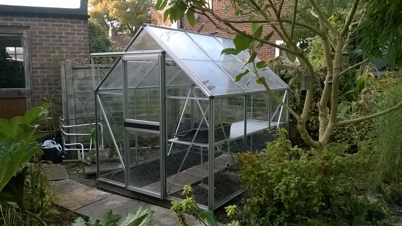 Our greenhouse 'Hurricane'